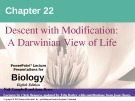 Lecture Biology: Chapter 22 - Niel Campbell, Jane Reece