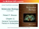 Lecture Molecular biology: Chapter 11 - Robert F. Weaver