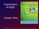 Lecture Management: Leading and collaborating in a competitive world - Chapter 9: Organizational agility