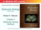 Lecture Molecular biology: Chapter 4 - Robert F. Weaver