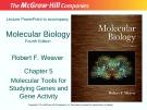 Lecture Molecular biology: Chapter 5 - Robert F. Weaver
