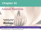 Lecture Biology: Chapter 41 - Niel Campbell, Jane Reece