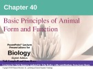 Lecture Biology: Chapter 40 - Niel Campbell, Jane Reece