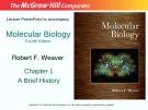 Lecture Molecular biology: Chapter 1 - Robert F. Weaver