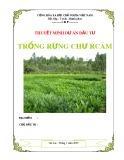 Tư vấn lập dự án miễn phí - Trồng rừng Chư Rcăm
