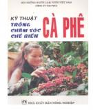 Ebook Kỹ thuật trồng, chăm sóc, chế biến cà phê: Phần 1