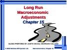 Lecture Macroeconomics - Chapter 15: Long run macroeconomic adjustments