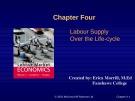 Lecture Labour market economics: Chapter 4 - Dwayne Benjamin, Morley Gunderson, Craig Riddell