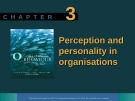 Lecture Organisational behaviour on the Pacific rim: Chapter 3 - Steve McShane, Tony Travaglione