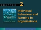 Lecture Organisational behaviour on the Pacific rim: Chapter 2 - Steve McShane, Tony Travaglione