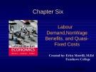 Lecture Labour market economics: Chapter 6 - Dwayne Benjamin, Morley Gunderson, Craig Riddell