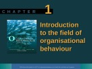Lecture Organisational behaviour on the Pacific rim: Chapter 1 - Steve McShane, Tony Travaglione