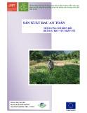 Sản xuất rau an toàn thích ứng với biến đổi khí hậu khu vực miền núi
