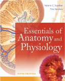 Ebook Essentials of Anatomy And Physiology