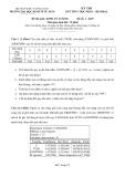 """Đề thi kết thúc học phần môn Kinh tế lượng (Hệ ĐHCQ)"""" của Trường ĐH kinh tế TP. HCM (Đề số 1 - K39"""