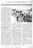 Hiệu quả kinh tế từ mô hình nuôi cá rô phi dòng Sô Đan - KS. Vũ Văn Tân