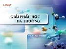 Bài giảng Giải phẫu học da thường - ThS. BS. Ngô Minh Vinh