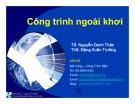 Bài giảng Công trình ngoài khơi: Chương 2 - TS. Nguyễn Danh Thảo. ThS. Đặng Xuân Trường