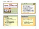 Bài giảng Kế toán tài chính: Chương 1 - TS. Nguyễn Thị Kim Cúc