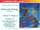 Lecture Molecular biology (Fifth Edition): Chapter 18 - Robert F. Weaver
