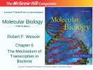 Lecture Molecular biology (Fifth Edition): Chapter 6 - Robert F. Weaver