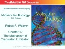 Lecture Molecular biology (Fifth Edition): Chapter 17 - Robert F. Weaver