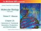 Lecture Molecular biology (Fifth Edition): Chapter 25 - Robert F. Weaver