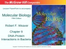 Lecture Molecular biology (Fifth Edition): Chapter 9 - Robert F. Weaver