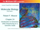 Lecture Molecular biology (Fifth Edition): Chapter 24 - Robert F. Weaver