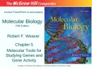 Lecture Molecular biology (Fifth Edition): Chapter 5 - Robert F. Weaver