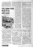 Các hình thức nuôi ếch hiệu quả - Nguyễn Ngọc Tú
