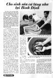 Cho sinh sản cá lăng nha tại Bình Định