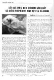 Kết quả thực hiện mô hình sản xuất cá giống rô phi đơn tính đực tại Hà Giang