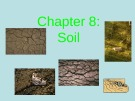 Lecture Environmental science - Chapter 8: Soil