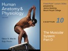 Lecture Human anatomy and physiology - Chapter 10: The muscular system (part d)