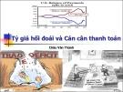Bài giảng Tỷ giá hối đoái và Cán cân thanh toán - Châu Văn Thành