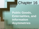 Lecture Economics (18th edition): Chapter 16 - McConnell, Brue, Flynn's