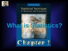 Lecture Statistical techniques in business and economics - Chapter 1: What is statistics?