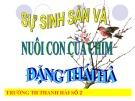Bài giảng Sự sinh sản và nuôi con của chim - Đặng Thái Hà