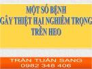 Bài giảng Một số bệnh gây thiệt hại nghiêm trọng trên heo - Trần Tuấn Sang