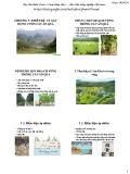 Bài giảng Cây ăn quả 1: Chương 5, 6, 7 - Học viện Nông nghiệp Việt Nam