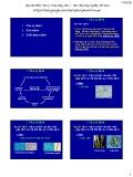 Bài giảng Bệnh cây đại cương: Bài 3a - Học viện Nông nghiệp Việt Nam