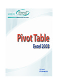 Pivot Table Excel 2003
