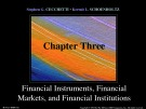 Lecture Money, banking, and financial markets (3/e): Chapter 3 - Stephen G. Cecchetti, Kermit L. Schoenholtz