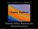 Lecture Money, banking, and financial markets (3/e): Chapter 18 - Stephen G. Cecchetti, Kermit L. Schoenholtz