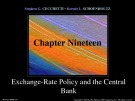 Lecture Money, banking, and financial markets (3/e): Chapter 19 - Stephen G. Cecchetti, Kermit L. Schoenholtz