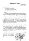 Bài giảng Viêm ruột thừa trẻ em - ThS. BS. Tạ Huy Cần