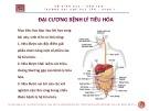 Bài giảng Đại cương bệnh lý tiêu hóa - ThS. BS Nguyễn Phúc Học