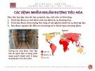 Bài giảng Các bệnh nhiễm khuẩn đường tiêu hóa - ThS. BS Nguyễn Phúc Học