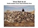 Bài giảng Virus học thú y: Virus dịch tả vịt - PGS.TS. Nguyễn Bá Hiên